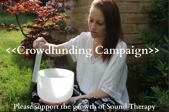 Crowdfunding for Sound Therapy instruments