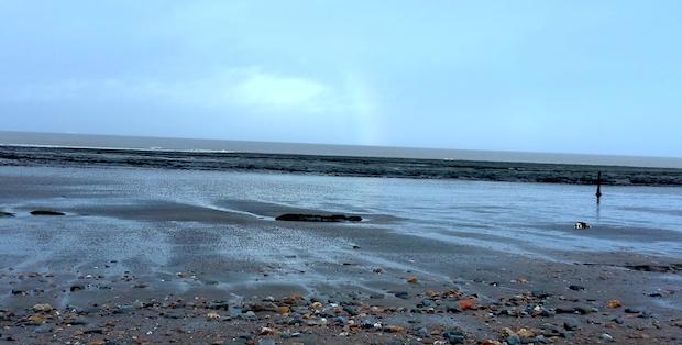 Empty beach with dog and rainbow