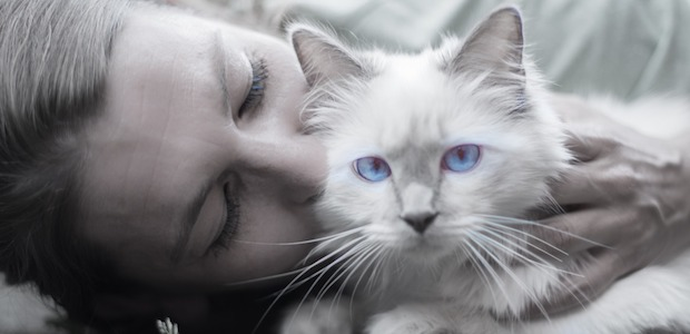 Animal psychic readings, getting to know your pet